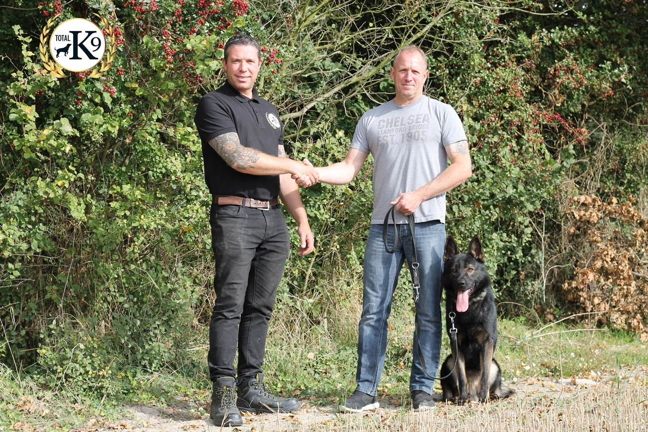 TOTAL K9 - Pet & Working Dog Training - One to One Training