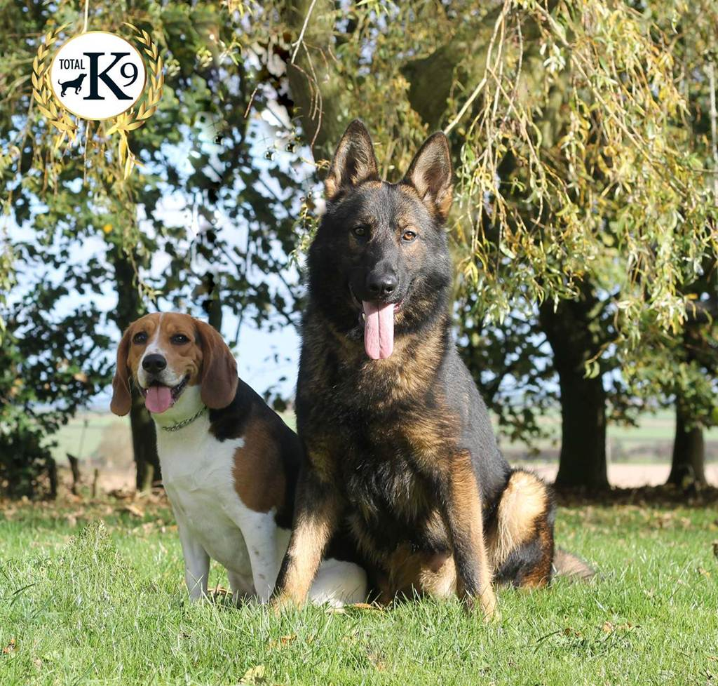 TOTAL K9 - Pet & Working Dog Training