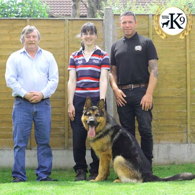 best UK testimonial protection dogs
