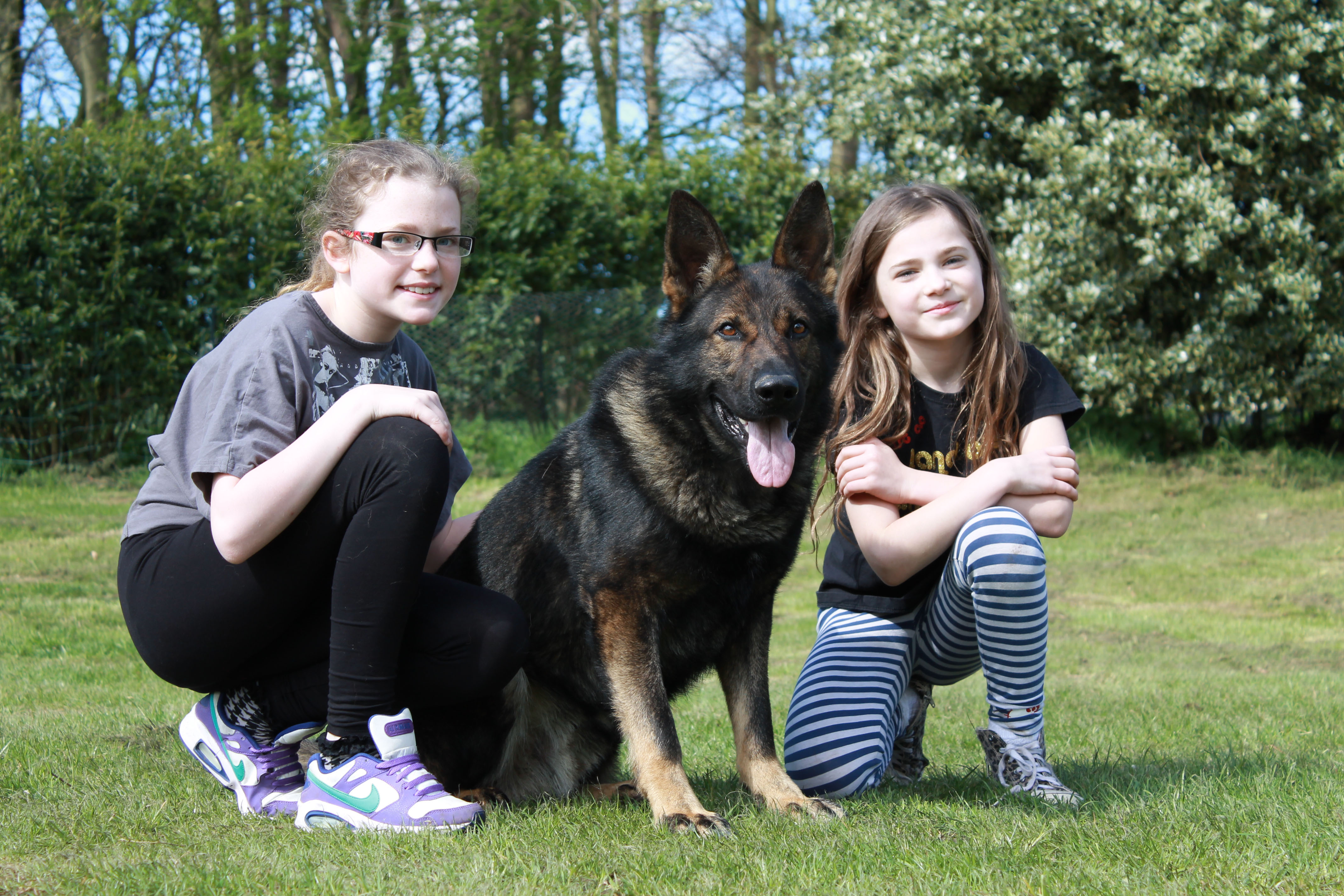 family protection dogs with girls