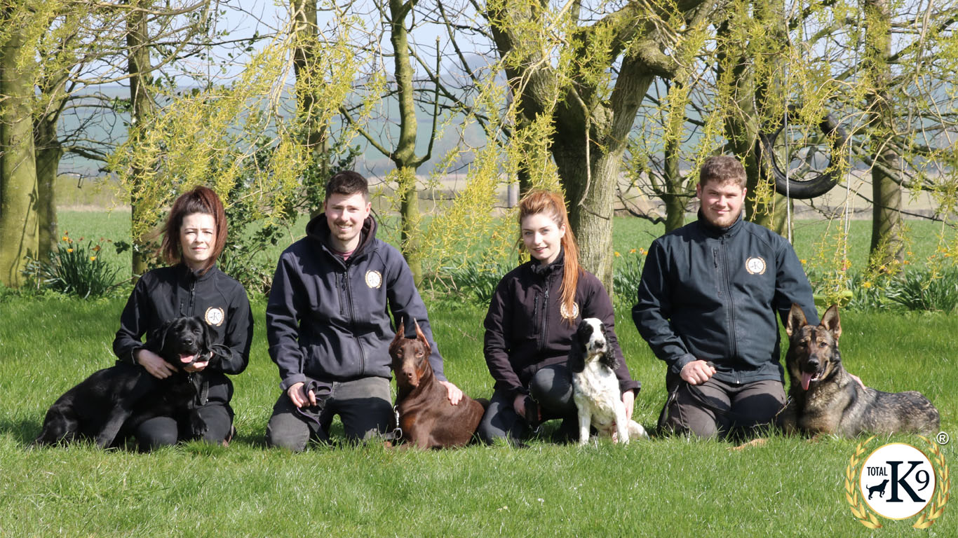 dog training team total k9