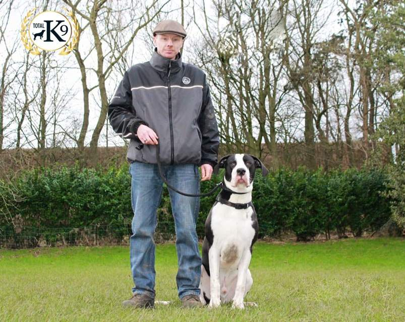 one to one dog training Ian and Moo